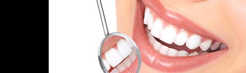 Dental Torino